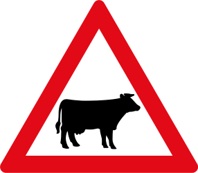 Traffic sign of South Africa: Warning for cattle on the road