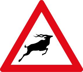Traffic sign of South Africa: Warning for crossing deer
