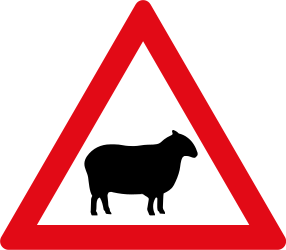 Traffic sign of South Africa: Warning for sheep on the road