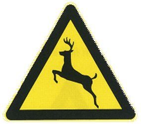 Traffic sign of China: Warning for crossing deer