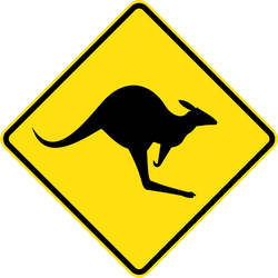 Traffic sign of Australia: Warning for kangaroos on the road