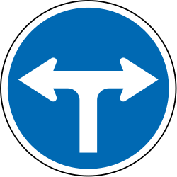 Traffic sign of New Zealand: Turning left or right mandatory