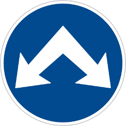 Traffic sign of Czech: Passing left or right mandatory