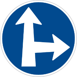 Traffic sign of Czech: Driving straight ahead or turning right mandatory