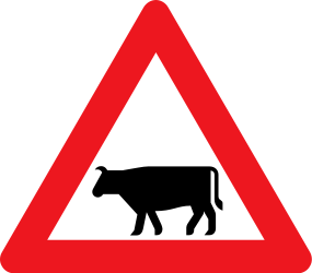 Traffic sign of Denmark: Warning for cattle on the road