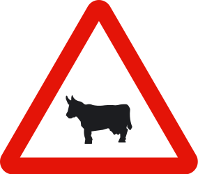 Traffic sign of Spain: Warning for cattle on the road