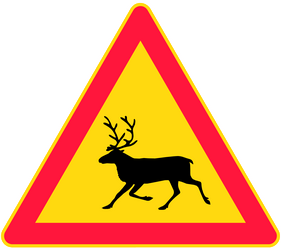 Traffic sign of Finland: Warning for reindeer on the road