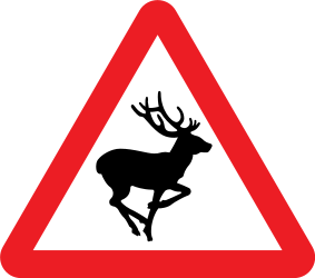 Traffic sign of United Kingdom: Warning for crossing deer