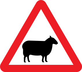 Traffic sign of United Kingdom: Warning for sheep on the road