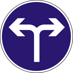 Traffic sign of Hungary: Turning left or right mandatory