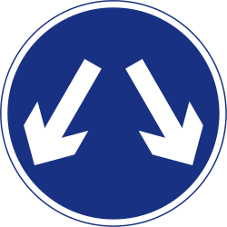 Traffic sign of Ireland: Passing left or right mandatory