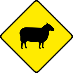 Traffic sign of Ireland: Warning for sheep on the road