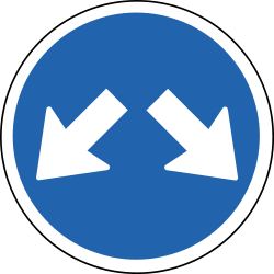 Traffic sign of Iceland: Passing left or right mandatory