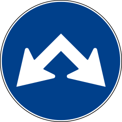 Traffic sign of Italy: Passing left or right mandatory
