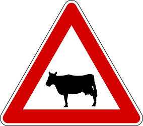 Traffic sign of Italy: Warning for cattle on the road