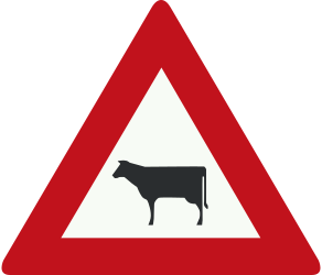 Traffic sign of Netherlands: Warning for cattle on the road