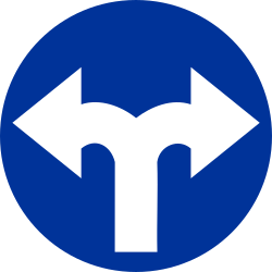 Traffic sign of Poland: Turning left or right mandatory
