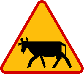 Traffic sign of Poland: Warning for cattle on the road