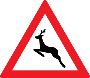 Traffic sign of Romania: Warning for crossing deer