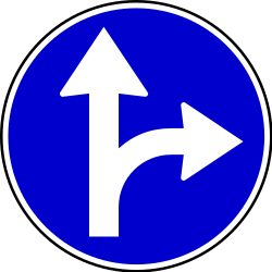 Traffic sign of Serbia: Driving straight ahead or turning right mandatory