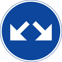 Traffic sign of Sweden: Passing left or right mandatory
