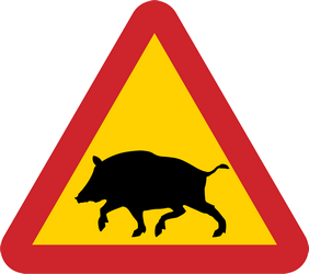 Traffic sign of Sweden: Warning for boars on the road