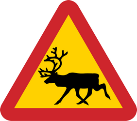 Traffic sign of Sweden: Warning for reindeer on the road