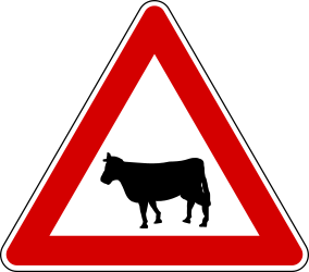 Traffic sign of Turkey: Warning for <a href='/en/turkey/overview/livestock'>cattle</a> on the road