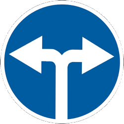 Traffic sign of Ukraine: Turning left or right mandatory